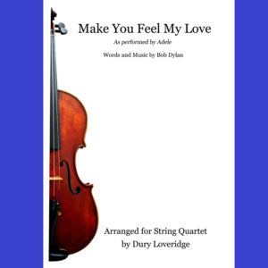 Make You Fell My Love - Adele - Dylan - String Quartet